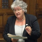 image of ann mcguire mp